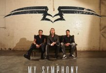Warbirds - My Symphony